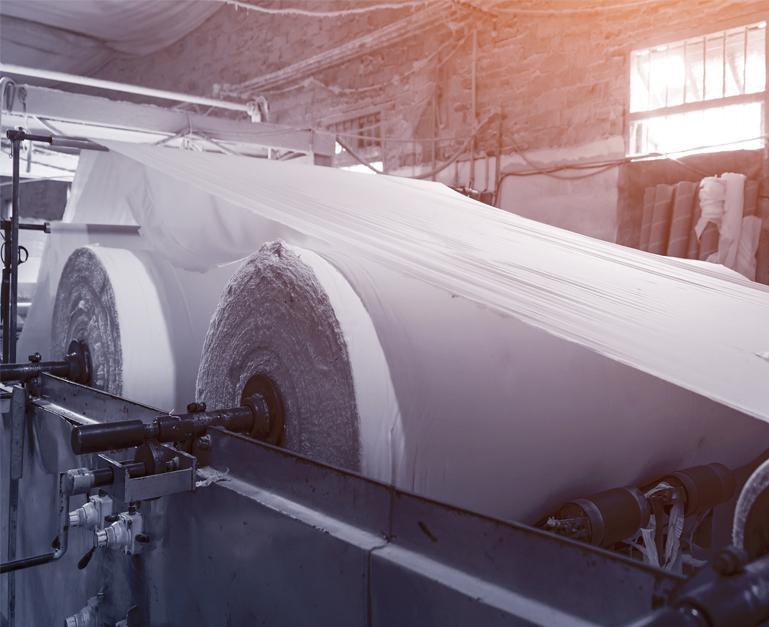 Paper & Pulp Mill